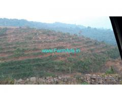 100 Acres Cashew Plantation for Sale in Rajapur