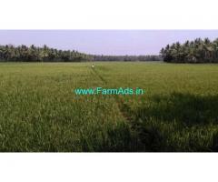 0.7 Acres Agriculture Land for Sale near Pulletikurru,Amalapuram