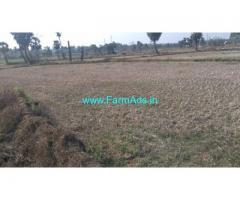 19 Cents Agriculture Land for Sale near Narasannapeta,Srikakulam