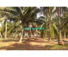 5.50 Acres Coconut Farm Land for sale in Periyapatti