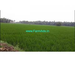 8.68 Acres Agriculture Land for Sale in Krapa,Ainavalli