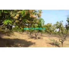 8 Acres Mango Farm for Sale near Shadnagar,Bangalore Highway