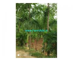 10 Acres Agriculture Land for Sale in Shadnagar