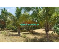 32 Acres Coconut Farm Land with Farm House for sale in Tirunelveli