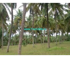 9.28 Acres Agriculture Land for Sale Someshwarapura,Airport Road