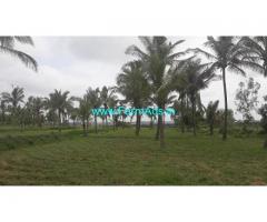 20 Gunta Farm Land for Sale in Shanthi grama,Bangalore Mangalore Highway