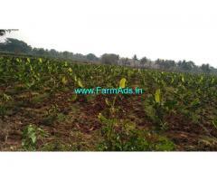 24 Acres 29 Gunta Agriculture Land for Sale near Mysore,Bogadi Gaddige Road