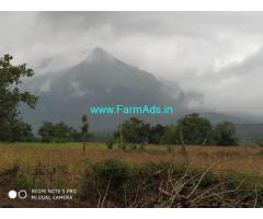 4 Acres Coffee Estate for Sale in Chikmagalur