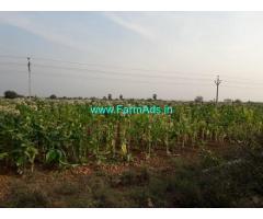 33 Acres Farm Land for Sale in Vinukonda