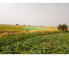2 Acres Agriculture Land for Sale in Meesaragadda road, Guntur