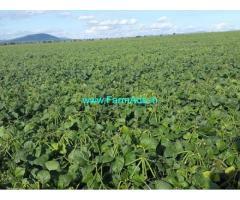 2.25 Acres Agriculture Land for Sale near Ponnur, Kolimarla