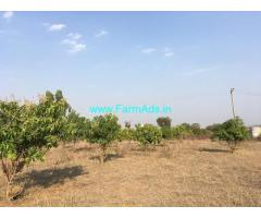 13.50 Acres Farm Land for Sale in Narsapur