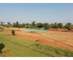 300 sq yards Farm Land For Sale near Bibinagar,AIIMS Bibinagar
