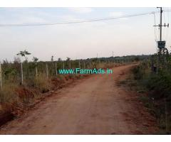 14.31 Acres Agriculture Land for Sale near Penukonda