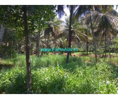7 Acres Coconut Farm for Sale near Pollachi