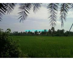 0.85 Cents Farm Land for Sale in Natta Raameshwaram