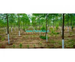 21 Cents Farm Land for Sale near Mylavaram