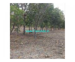 6 Acres Farm Land for Sale near Zahirabad,Zahirabad Tandur Road