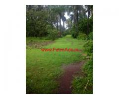 Farm Property for sale in Collem - Dharbandora - Goa