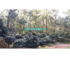 19.03 Acres Coffee Estate for Sale in Kallathigiri,Kemmangundi Road