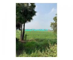 3.02 Acres Agriculture Land for Sale near Gudivada,Machilipatnam Road