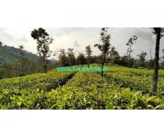 20 Cents Land for Sale near Vagamon