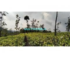 20 Cents Land for Sale near Vagamon
