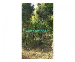 6 Acres Farm Land for Sale at Vagamon,Pinevalley