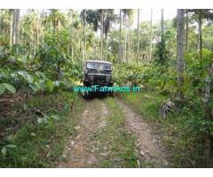 7 Acres Coconut Farm for Sale in Bittangala - Virajapete -Kodagu