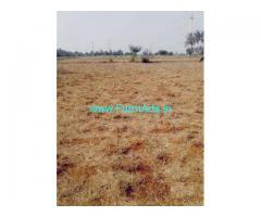 2.75 Acres Farm Land for Sale near Periyapatti,Dharapuram Udumalai road