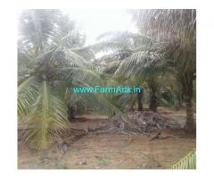 6 Acres 50 Cents Coconut Farmland for Sale in madathukulam