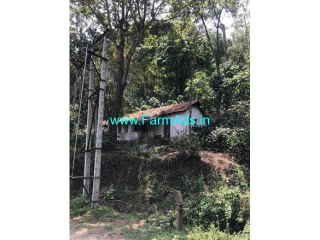 2 Acres 4 Guntas Coffee Estate for Sale near Chikmagalur