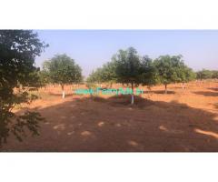 242 sq yards Mango Farm Land for Sale at Vangapally
