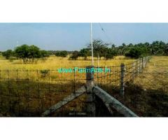 3.5 Acres Plain Agriculture Land for Sale in Periyapatti
