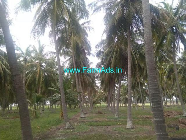 6.70 Acres Coconut Farm with Farm house for Sale in Periyapatti