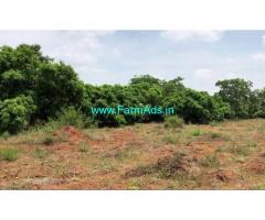 15 Acres Mango Farm for Sale near Courtallam Waterfalls, Tenkasi