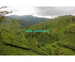 90 Acres Tea Estate for Sale at Avalanchi, Avlanchy Road