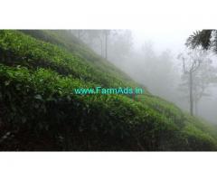 100 Acres Tea Garden for Sale at Coonoor