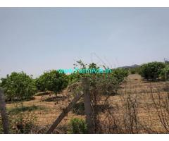 5 Acres Agriculture Land for Sale at Amangal