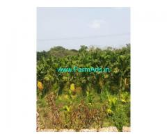 1 Hectare 50 Cents Agriculture Land for Sale at Mangalore
