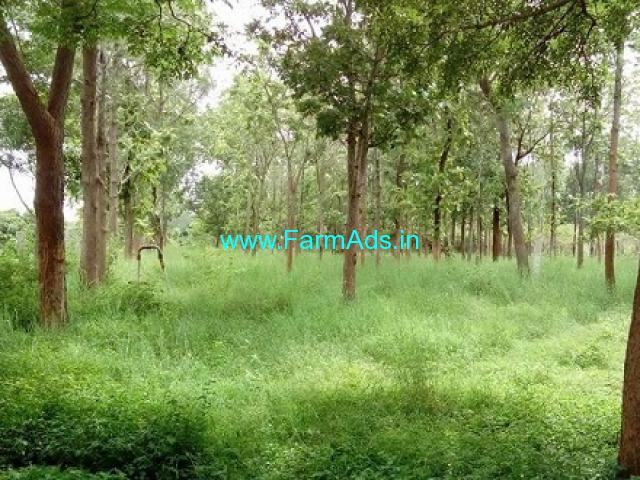 6 Acres Farm with Farm house for Sale at Chikk Madure
