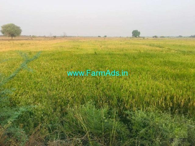 27 50 Acres Agriculture Land for Sale at Ranipur Karimnagar