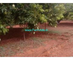 25 Acres Mango Garden for Sale near Kavali