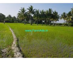 24 Gunta Farm Land for Sale at Chinakam Palle,Kanipakam