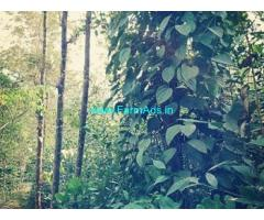 48 Cents Farm Land for Sale at Valat,Behind Valad Juma Masjid