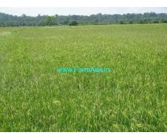 43 Acres Agriculture Land Sale at Mallar,Bhima River water
