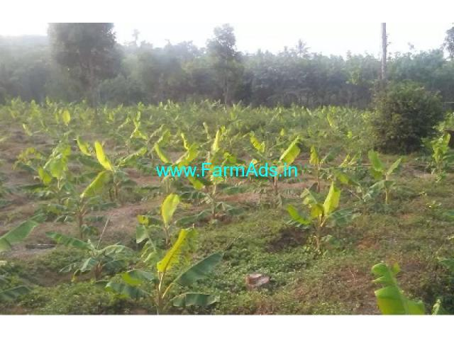 1 Acre 40 Cents Farm Land Sale near Kalpetta