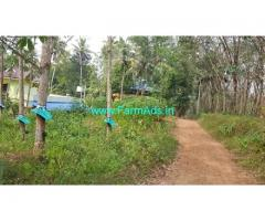 30 Cents Farm Plot for Sale in Kudavoor,Kilimanoor kallambalam road
