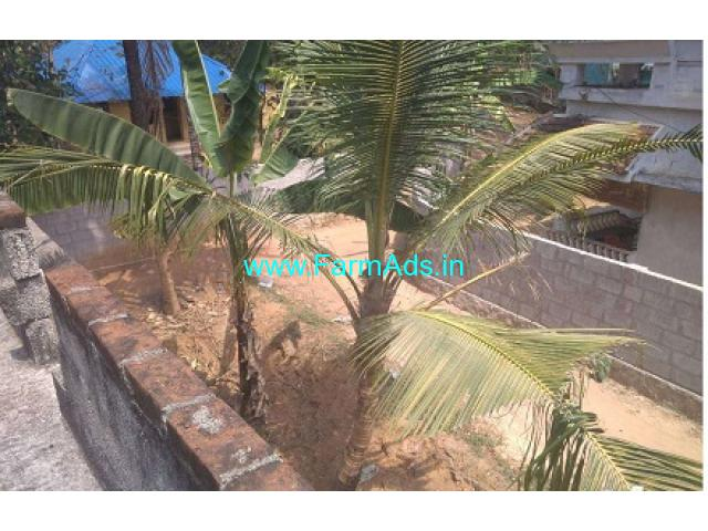 2.5 Acres of Agriculture land for Lease at Nedumkandam