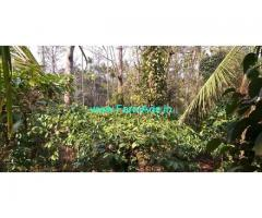 7 Acres Farm Land for Sale near Waynad near State Highway